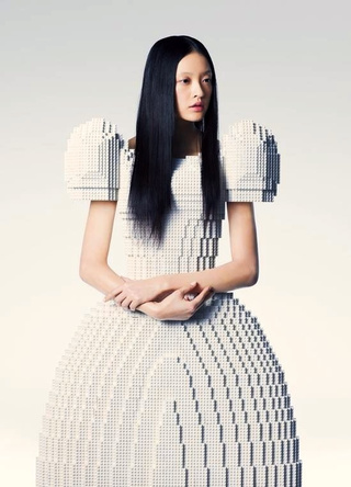 Lego wedding Dress Hosokai